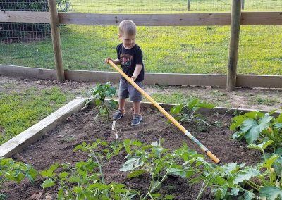 battle-creek-beef-garden-helper
